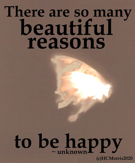 lumen print with reasons to be happy quote
