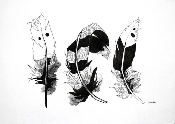 Marker and ink feather sketches.