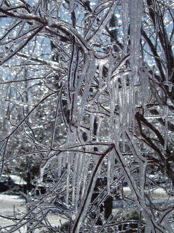 Ice Storm, Long Island