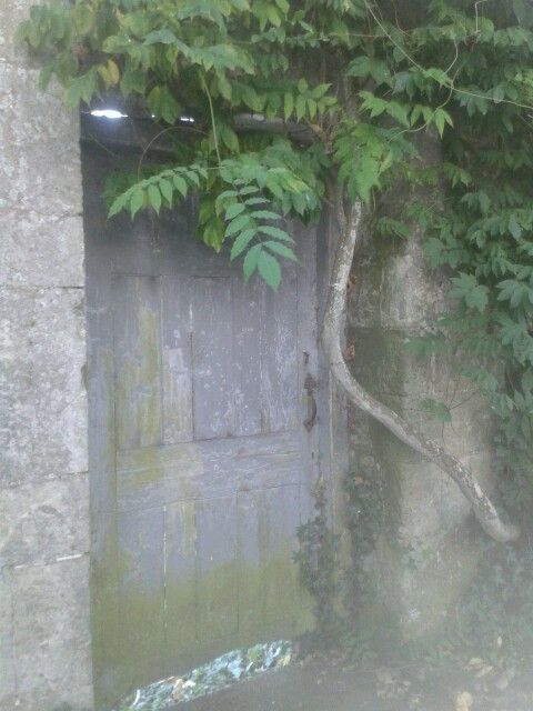 The doorway to my secret place..
