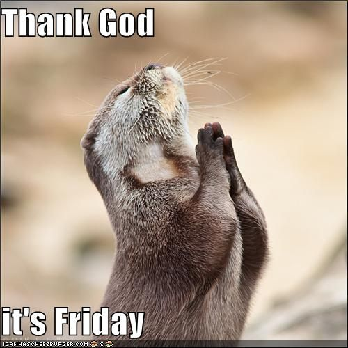 thank god it's friday | Funny Thank God Its Friday Pictures