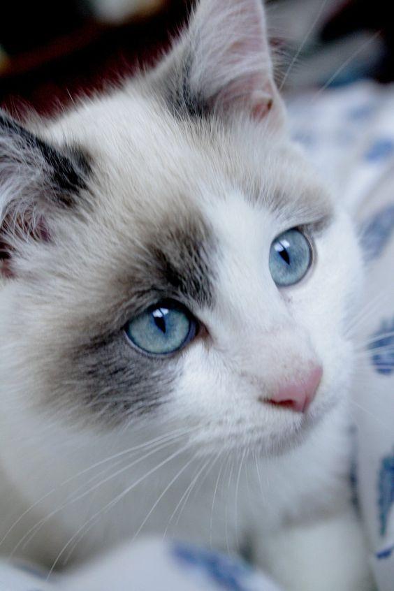 She is so beautiful!: