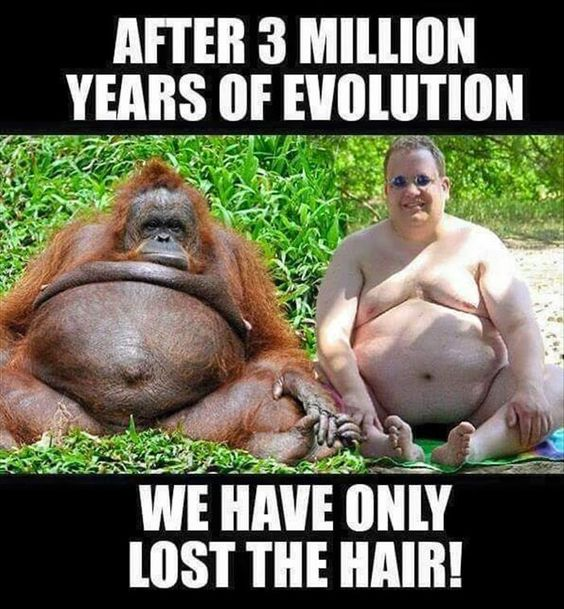 After 3 million years of evolution, little has changed.
