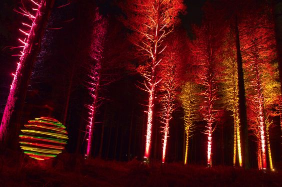 Electric Forest Orb