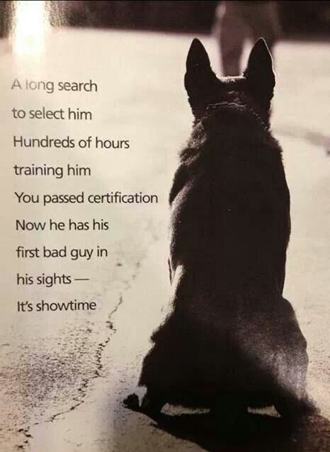 How do I get a job as a humane law enforcement officer?
