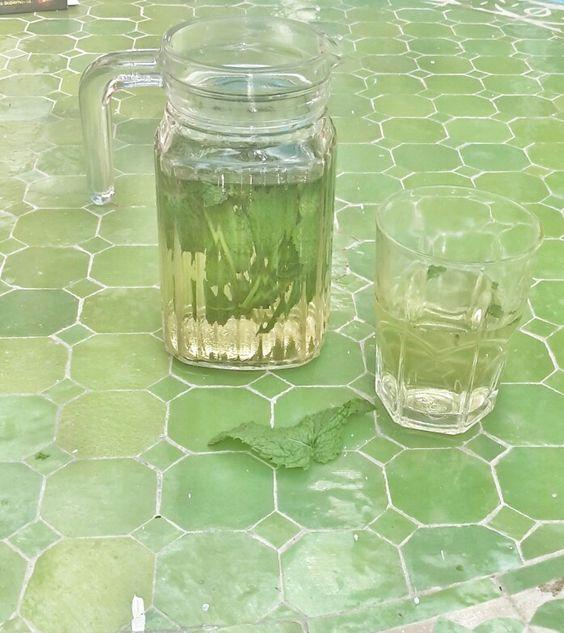 Water minth