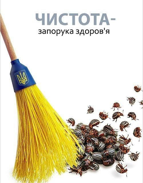https://img-fotki.yandex.ru/get/28/166595434.1c7/0_efddd_21db1b0b_orig