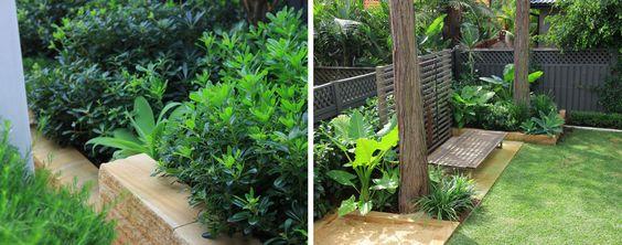 Landscaping Sydney | menai ménage garden - Impressions Landscape-Design Sandstone edges, dark fence