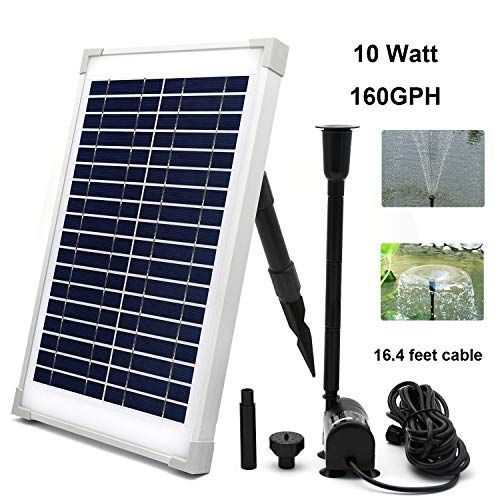 Amazonsmile Eco Worthy Solar Fountain Water Pump Kit 10w Solar Panel Submersible Powered Pu In 2020 Solar Powered Fountain Solar Powered Fountain Pump Solar Fountain