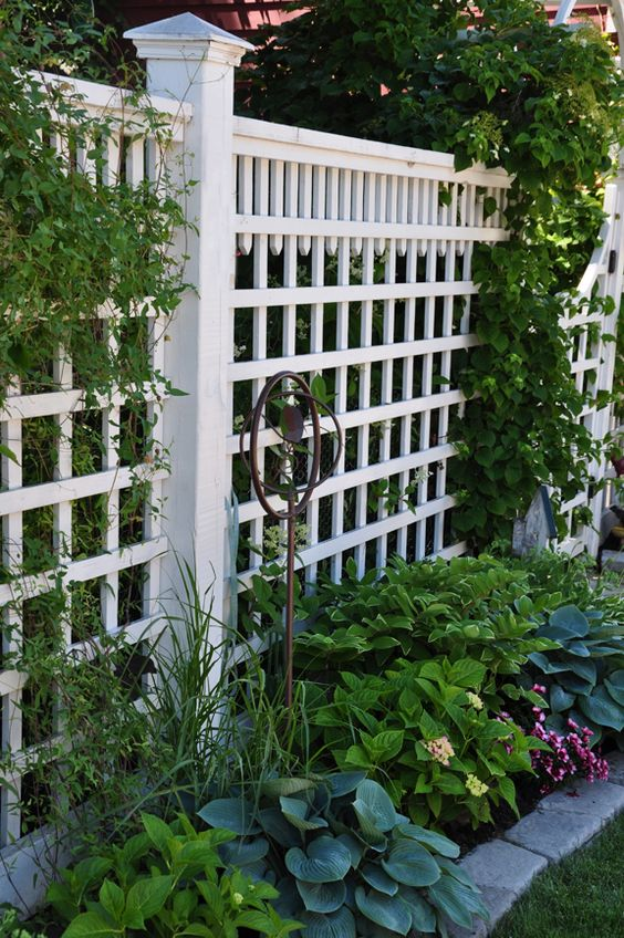 Fence lattice fence and gardens on pinterest for Lattice garden fence designs