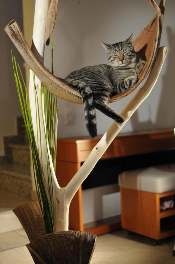 katzenbaum modern google suche ideen rund um s haus pinterest b ume katzen und blog. Black Bedroom Furniture Sets. Home Design Ideas