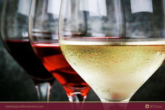 Tinto, rosado o blanco, ¿cuál te apetece para el día de hoy?   #Sommelier