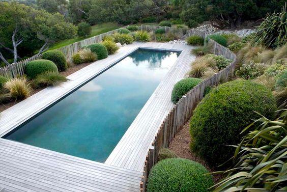 Piscine/ terrasse bois et jardin minimaliste