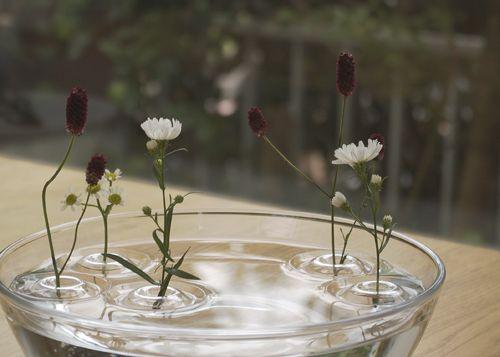 一輪挿 [Floating Vase/Ripple]【Designers Product by oodesign】