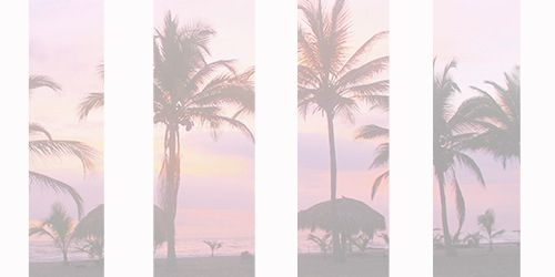 Pink, Trees and Palm trees on Pinterest