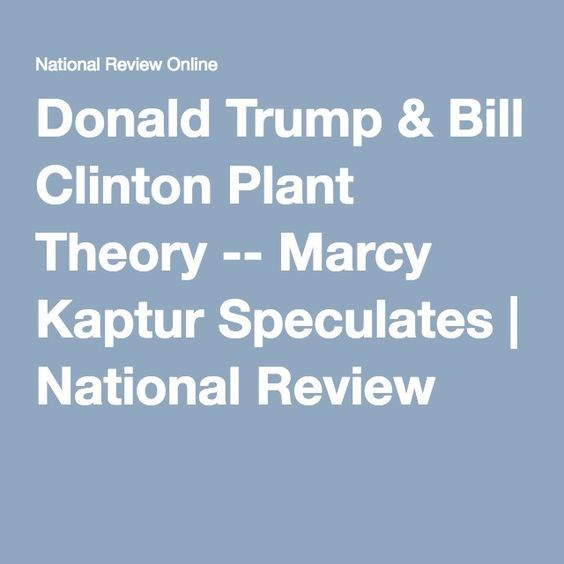 Donald Trump & Bill Clinton Plant Theory -- This is what I have been speculating about for the last 6 months!!