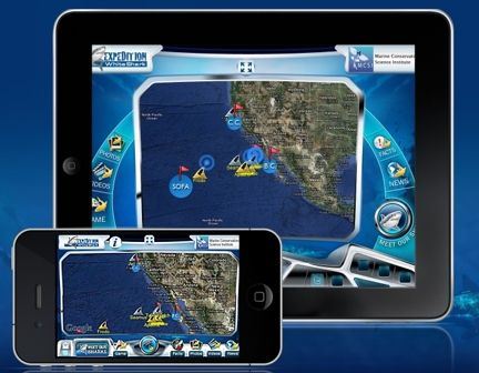 Great White Shark tracker for iphone/ipad. now...if only they could do bullsharks for the east coast.