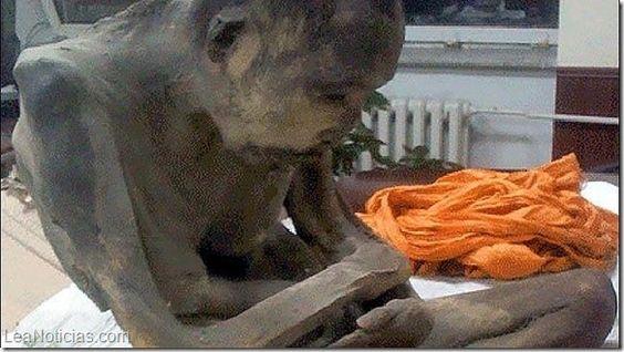 La momia que medita en posición de loto desde hace 200 años - http://www.leanoticias.com/2015/02/05/la-momia-que-medita-en-posicion-de-loto-desde-hace-200-anos/