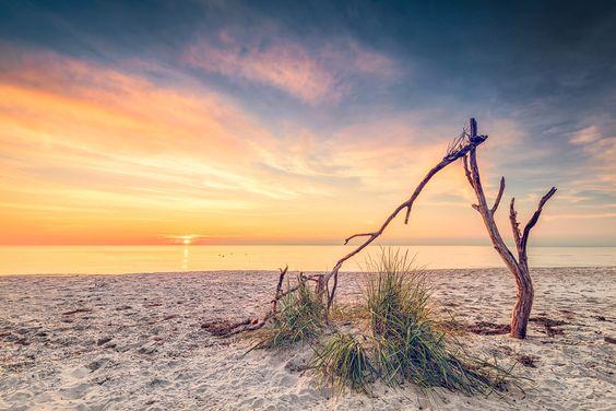 Stillleben am Weststrand (Prerow / Darß), Fischland, Küste, Ostsee, Prerow, Sonnenuntergang, Strand, Weststrand, Wolken