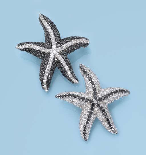 Black starfish pair