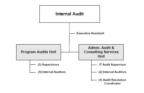We bring the required skills, experience and capacity in co - internal audit report