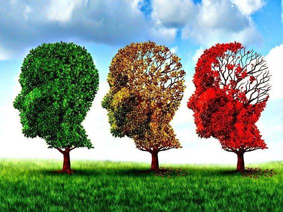 The Life Extension Blog: Can Ashwagandha Reverse Alzheimer's Disease?