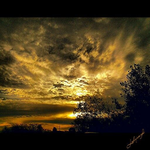 Golden sky. Copyright Melody Bills-Hubbard. For purchase www.instacanv.as/lodyangel. Follow me on instagram @Melody Dawn.