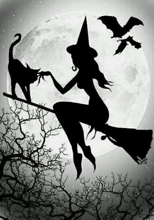 Hoje, dia das Bruxas, desejo a vc, amiga: q seus cabelos brilhem, q sua barriga seque, q sua bunda empine, q seus desejos se...