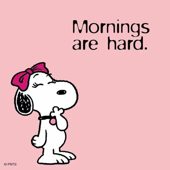 Mornings are hard !! A H 😎