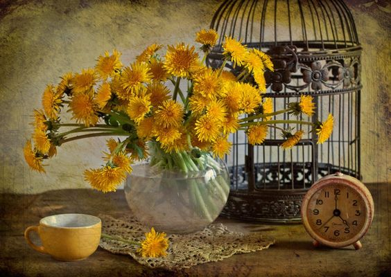 Image detail for -... lace, lovely, nice, old, photo, photography, pretty, still life, tea
