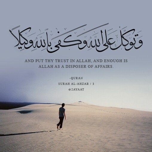 1001 Kata Kata Bijak Tokoh Motivasi Kehidupan Cinta Islami