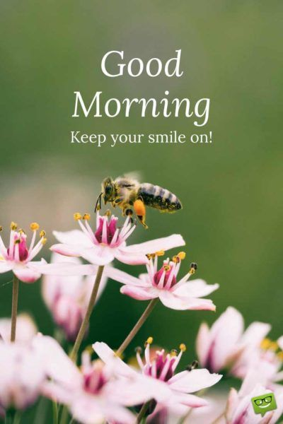 Good Morning. Keep your smile on!