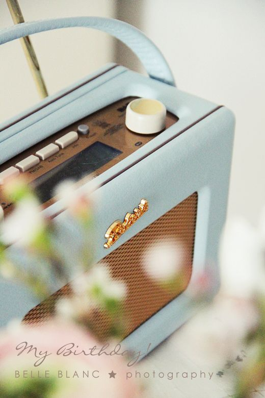 "I must have this radio...Roberts Revival DAB Radio in ""Duck Egg"""