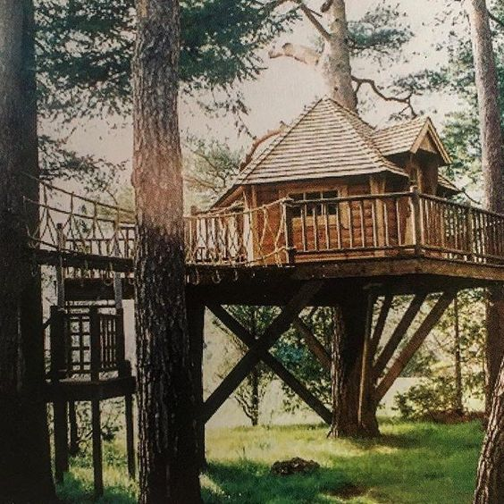 If you owned this I'm not sure your guests would want to leave. Built by @petethechippy  #treehouseclub