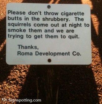 BWAHAHAHAHAHAHAHA!!!!!!!!! smoking squirrels
