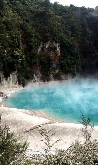 Thermale Naturwunder auf der Nordinsel Neuseeland, im Waimangu Valley. Nordinsel Abenteuer.