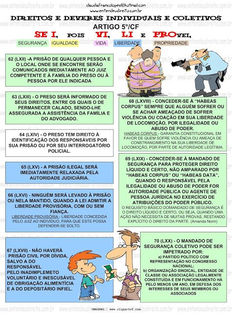 Artigos direito constitucional
