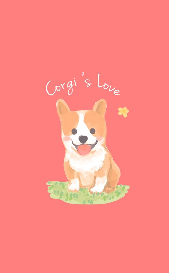corgi background