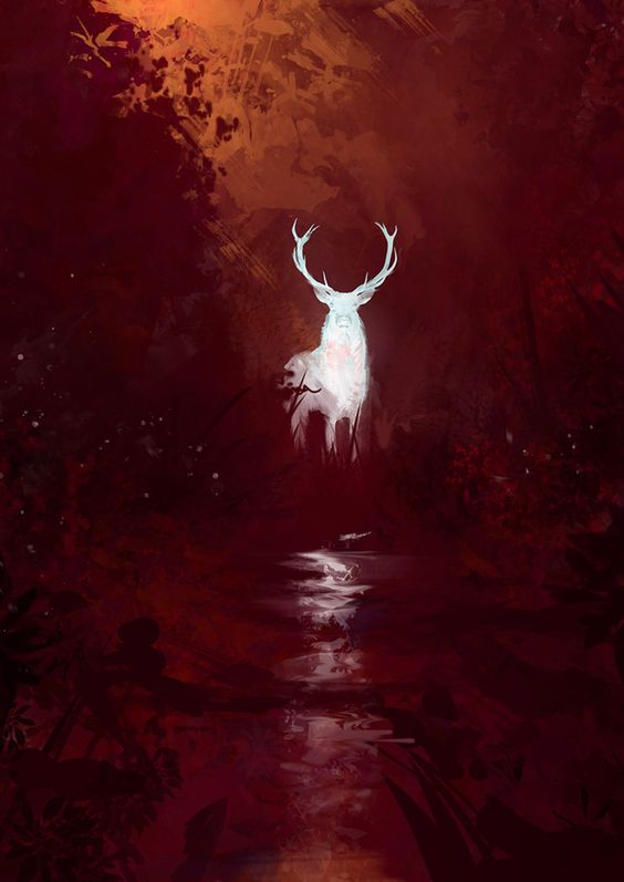One night, while out looking for Bigfoot, we spotted The White Stag... ~~ Houston Foodlovers Book Club