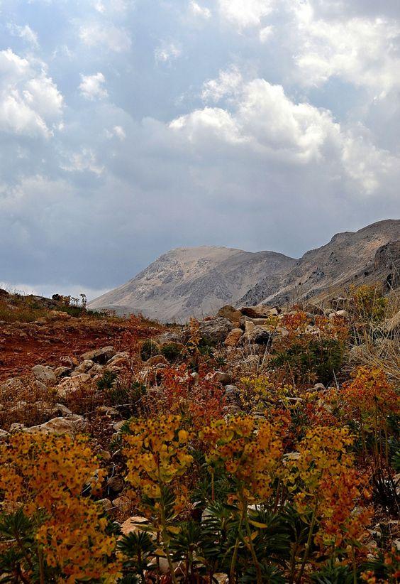 Photograph highland by Yilmaz Kendirli on 500px