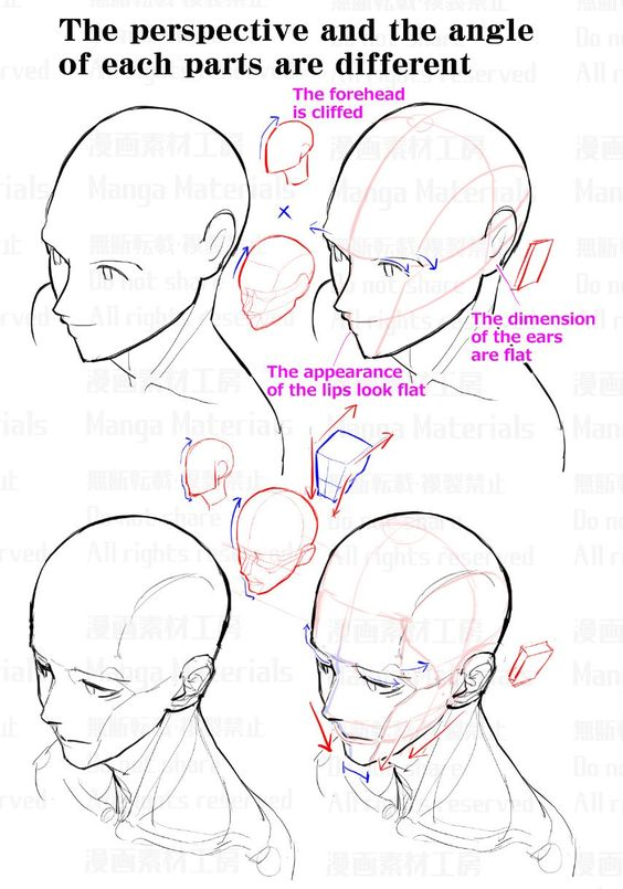 """MangaMaterials@TESCO on Twitter: """"How to draw the face in high angle view : Awkward part of face and the correcting method②… """""""