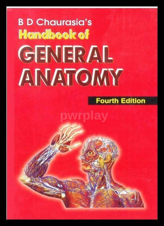 Human Anatomy & Physiology by Erin C. Amerman PDF - $17.99 IMMEDIATE ...