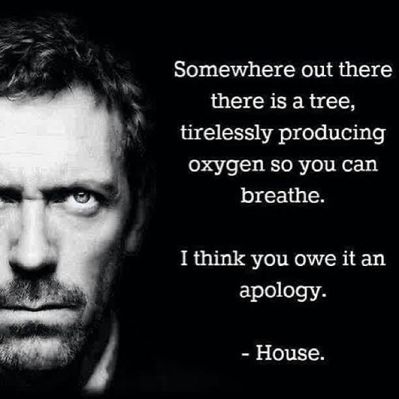"""""""Somewhere out there there is a tree, tirelessly producing oxygen so you can breathe. I think you owe it an apology."""" Dr. Gregory House, House MD quotes"""