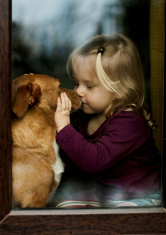 "Little Girl to Her Beloved Dog:  ""The Secret I've just told you 'Chester' you mustn't tell anyone; Promise?!""                               (Photo ~ 'Friendship' By: Agnieszka Gulczyńska.):"