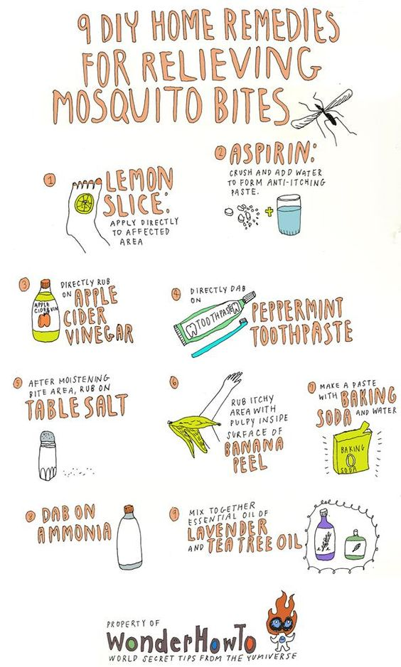 natural bug bite remedies~ A woman commented to use deoderant w/aluminum on mosquito bites to relieve itching, I'll have to try that!