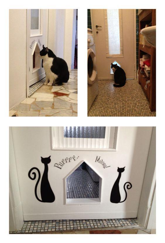 Porta del bagno con ingresso riservato per il gatto.