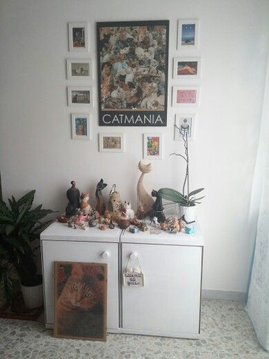We really love #cats. #home #decor #cat #white