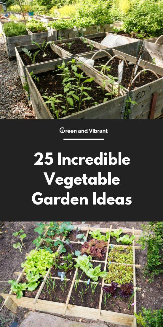 25 Incredible Vegetable Garden Ideas Container Gardening Vegetables Growing Vegetables Vegetable Garden