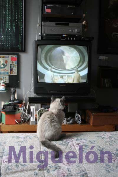 Miguelón también es fan de las series de Ciencia Ficción.