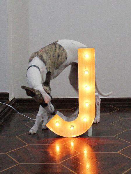 Luminária Retrô Letra J 45cm